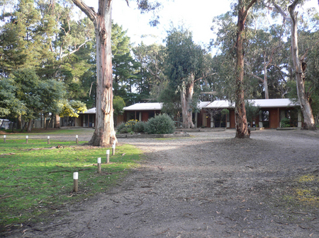 Koala Park Resort - St Kilda Accommodation