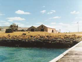 Mt Dutton Bay Woolshed Hostel - St Kilda Accommodation
