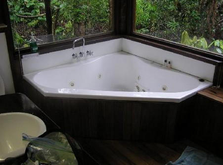The Canopy Rainforest Tree Houses and Wildlife Sanctuary - St Kilda Accommodation