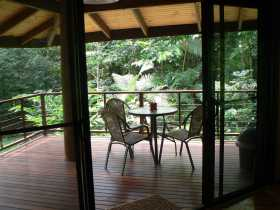 Cape Trib Exotic Fruit Farm Bed and Breakfast - St Kilda Accommodation