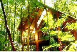 The Canopy Treehouses - St Kilda Accommodation