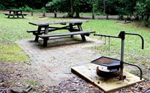 Bellbird campground - St Kilda Accommodation