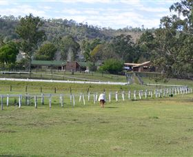 Kellarni Downs Farmstay-Scenic Rim - St Kilda Accommodation