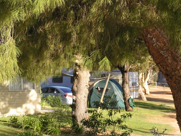 Barmera North Lake Caravan Park - St Kilda Accommodation