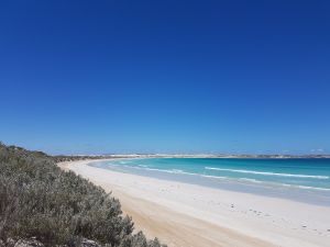 Coffin Bay National Park Campgrounds - St Kilda Accommodation