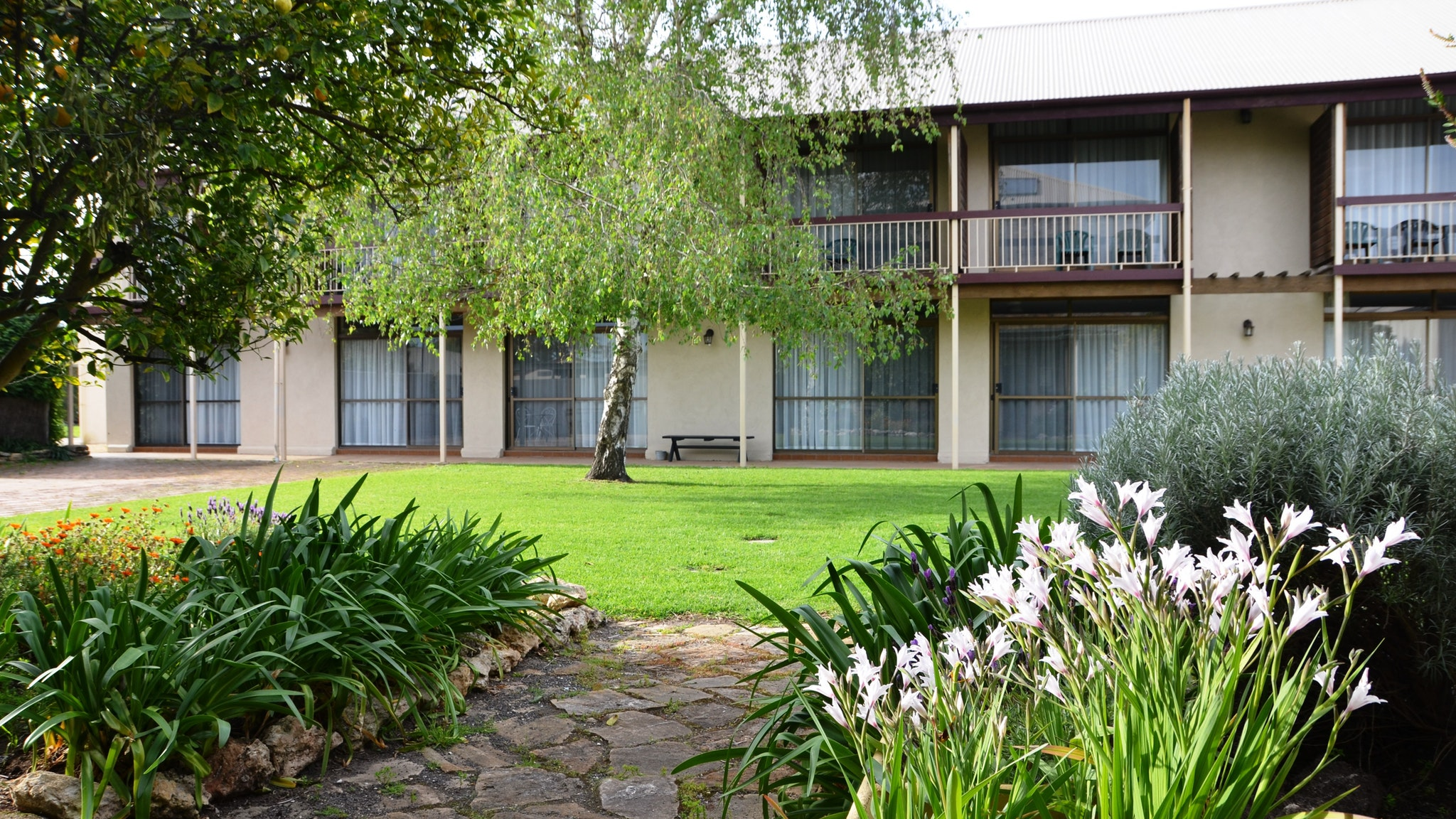 Coonawarra Motor Lodge - St Kilda Accommodation