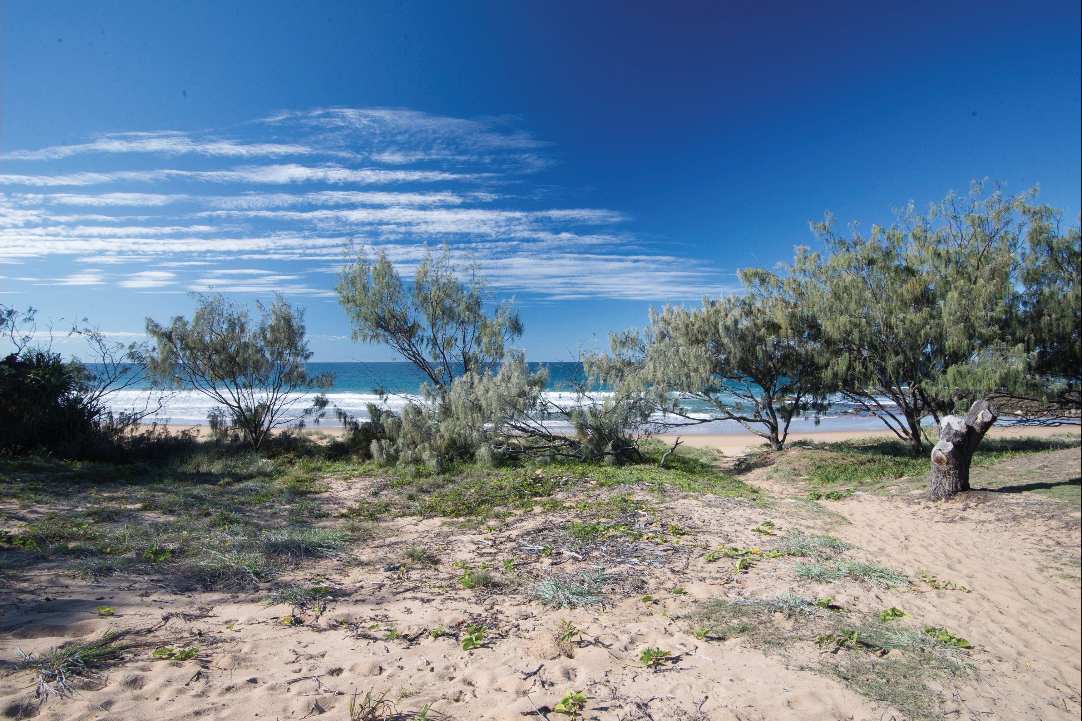 Deepwater National Park camping - St Kilda Accommodation