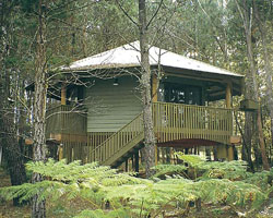 Possums Hideaway - St Kilda Accommodation