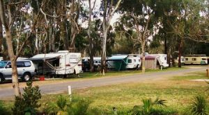 Buronga Riverside Tourist Park - St Kilda Accommodation