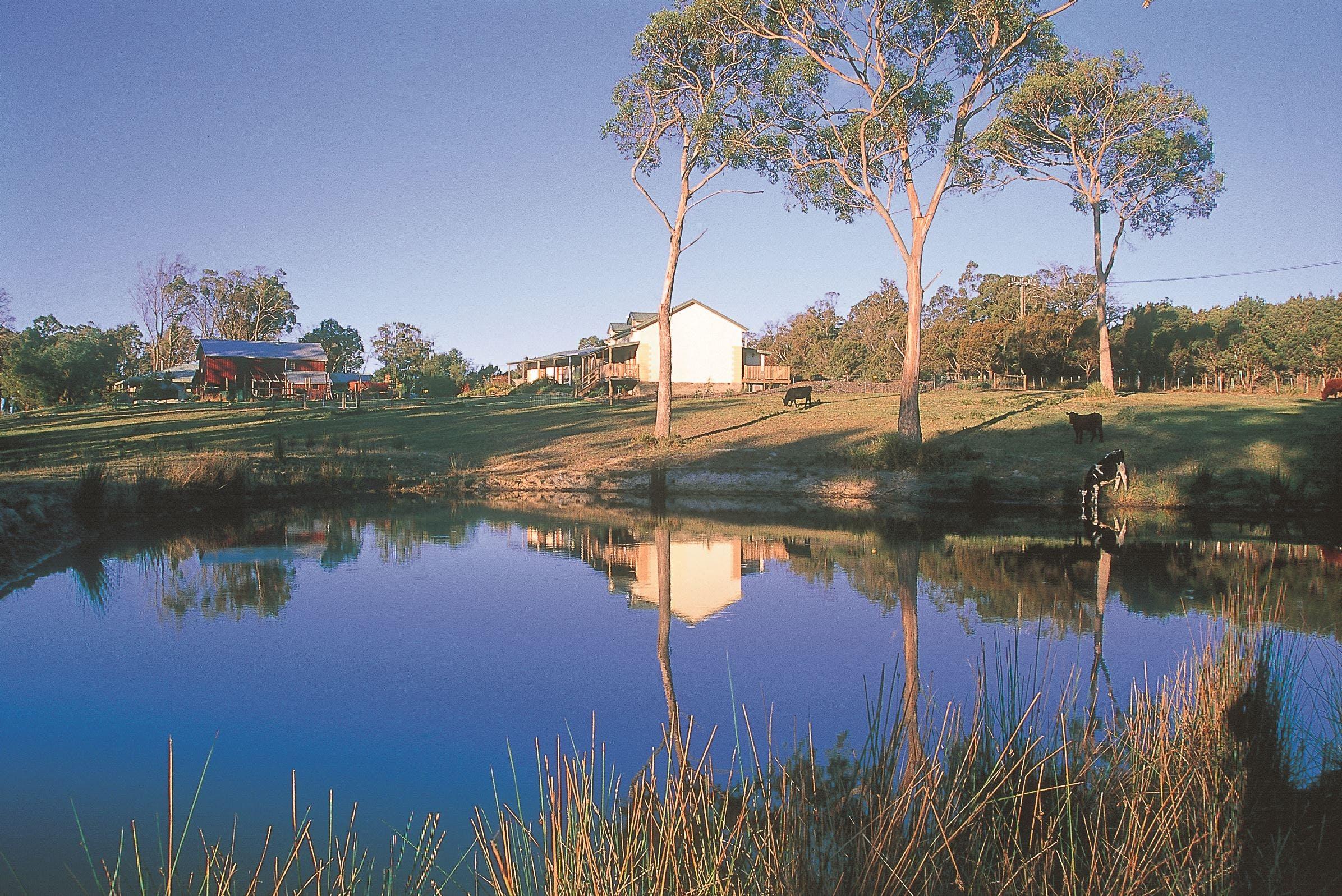 Platypus Park Country Retreat - St Kilda Accommodation