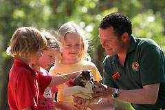 Cleland Wildlife Park - St Kilda Accommodation