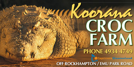 Koorana Saltwater Crocodile Farm - St Kilda Accommodation