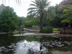 Brisbane City Botanic Gardens - St Kilda Accommodation