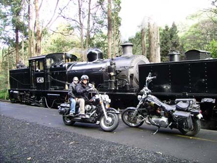 Andy's Harley Rides - St Kilda Accommodation