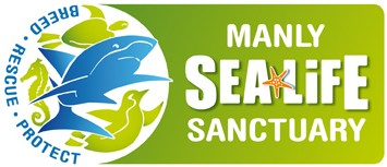 Manly SEA LIFE Sanctuary - St Kilda Accommodation