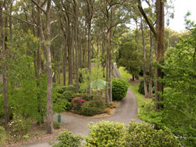Mount Lofty Botanic Garden - St Kilda Accommodation
