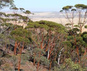 Mount Matilda Walk Trail Wongan Hills - St Kilda Accommodation