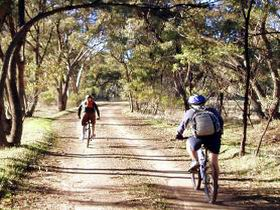 Bike About Mountain Bike Tours And Hire - St Kilda Accommodation