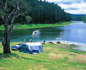 Danbulla National Park and Danbulla State Forest - St Kilda Accommodation