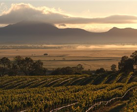 Montara Wines - St Kilda Accommodation