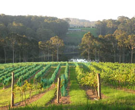 Tilba Valley Wines - St Kilda Accommodation