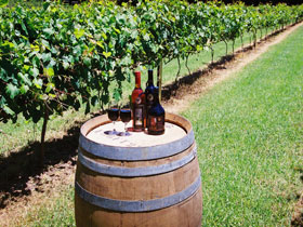 Cedar Creek Estate Vineyard and Winery - St Kilda Accommodation