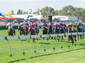 Morphettville Racecourse - St Kilda Accommodation