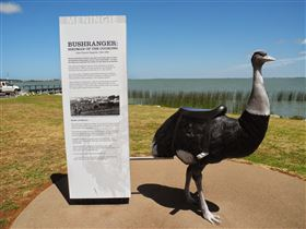 Birdman of the Coorong - St Kilda Accommodation