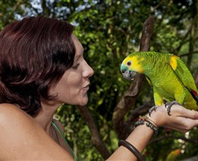 Birdworld Kuranda - St Kilda Accommodation