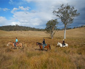 Chapman Valley Horse Riding - St Kilda Accommodation