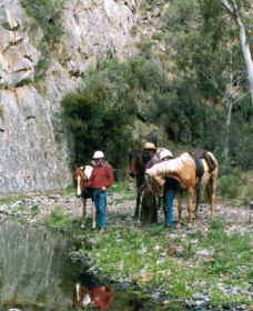 Yarramba Horse Riding - St Kilda Accommodation
