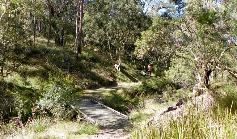 Wollomombi walking track - St Kilda Accommodation