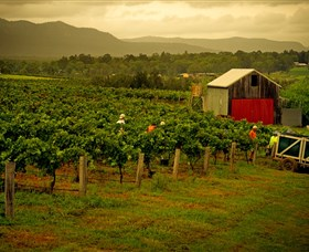 Around Hermitage Wine and Food Trail Hunter Valley - St Kilda Accommodation