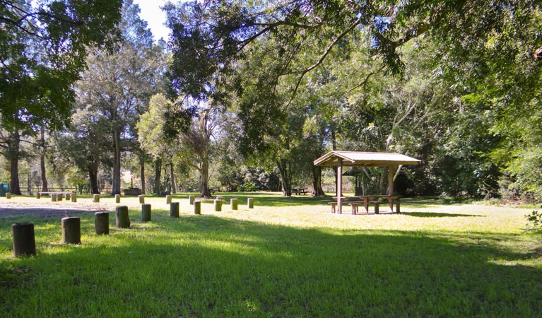 Moore Park picnic area - St Kilda Accommodation