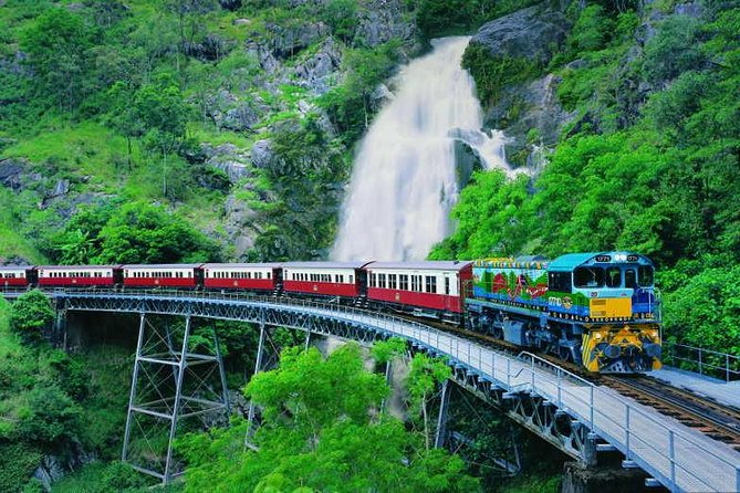 Full-Day Tour with Kuranda Scenic Railway Skyrail Rainforest Cableway and Hartley's Crocodile Adventures from Cairns - St Kilda Accommodation
