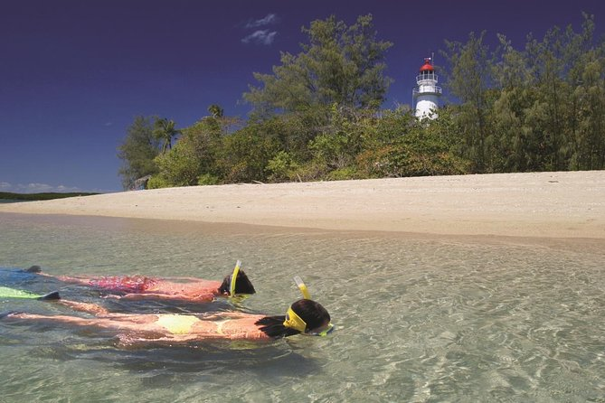 Wavedancer Low Isles Great Barrier Reef Sailing Cruise from Palm Cove - St Kilda Accommodation