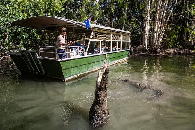 Hartley's Crocodile Adventures Day Trip from Palm Cove - St Kilda Accommodation