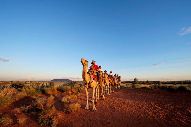 Uluru Camel Express Sunrise or Sunset Tours - St Kilda Accommodation