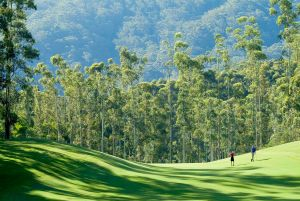Bonville Golf Resort - St Kilda Accommodation