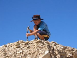Richmond Fossil Hunting Sites - St Kilda Accommodation