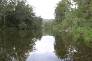 Riverside Campground and Picnic Area - St Kilda Accommodation