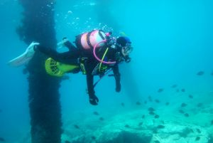 Shellharbour Scuba  and Photography Centre - St Kilda Accommodation