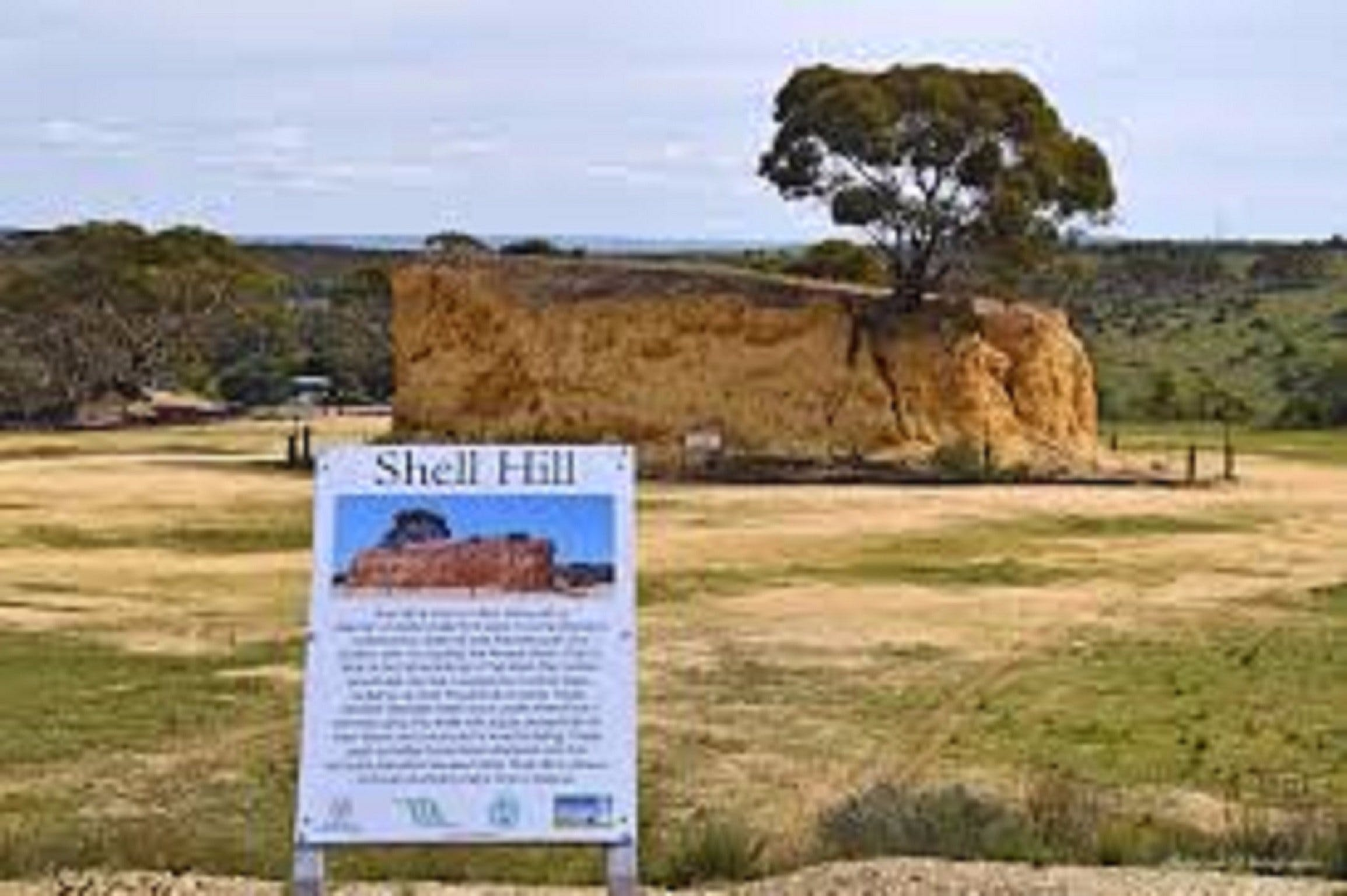 Shell Hill Reserve - St Kilda Accommodation