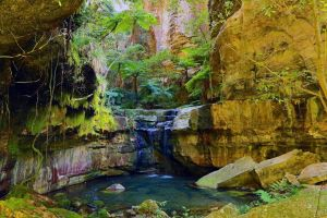 Glimpse of the Outback 5 Day Tour - Roma and Surrounds - St Kilda Accommodation