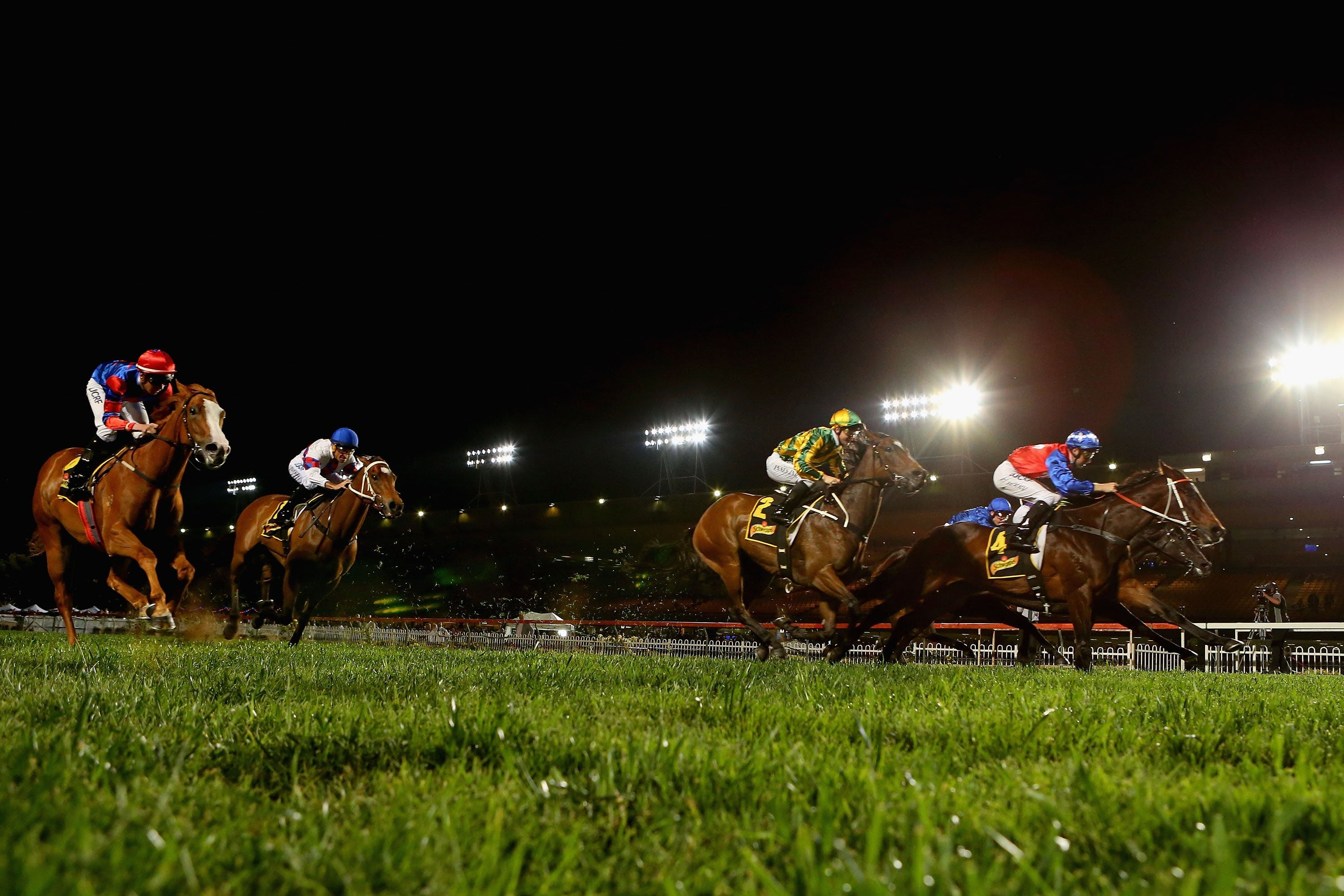 Canterbury Park Racecourse - St Kilda Accommodation