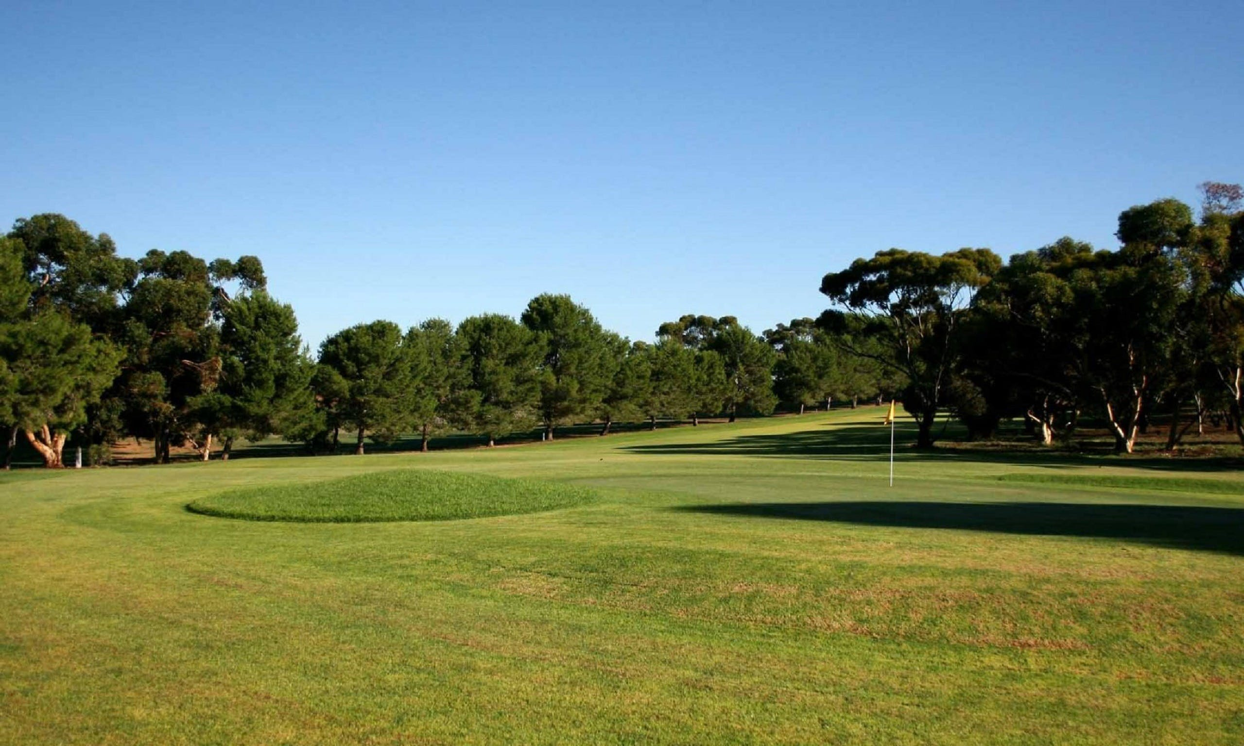 Mannum Golf Club - St Kilda Accommodation