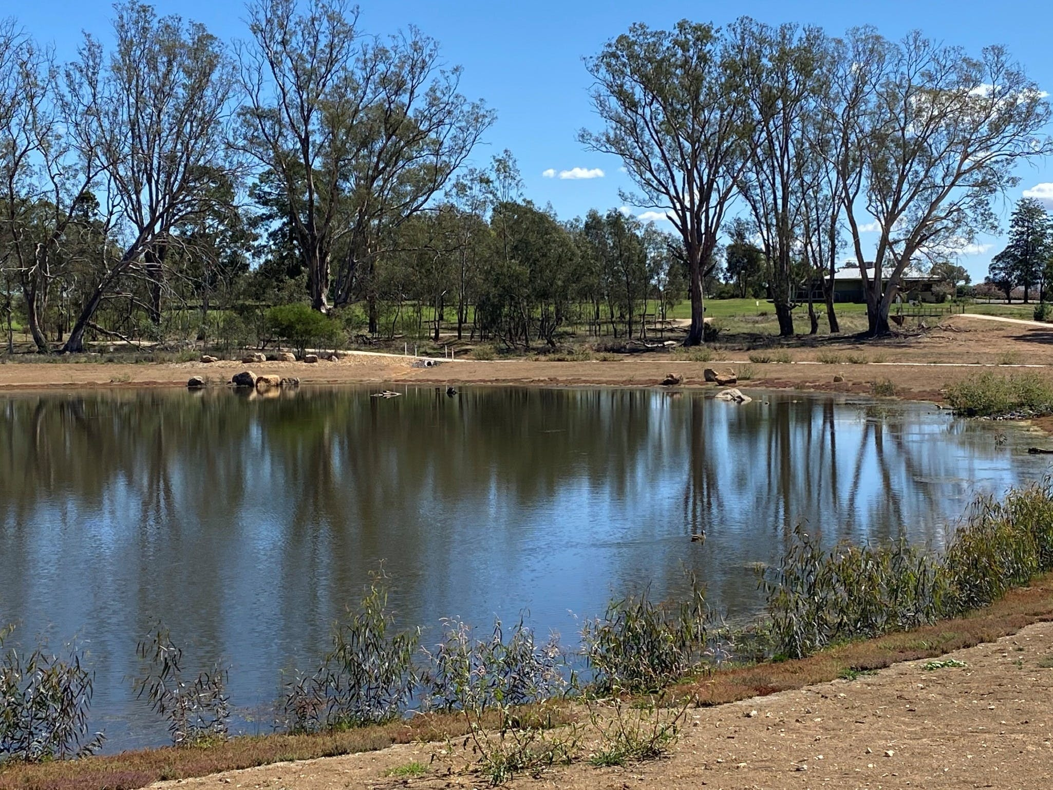 Lake King Wetlands at Rutherglen - St Kilda Accommodation
