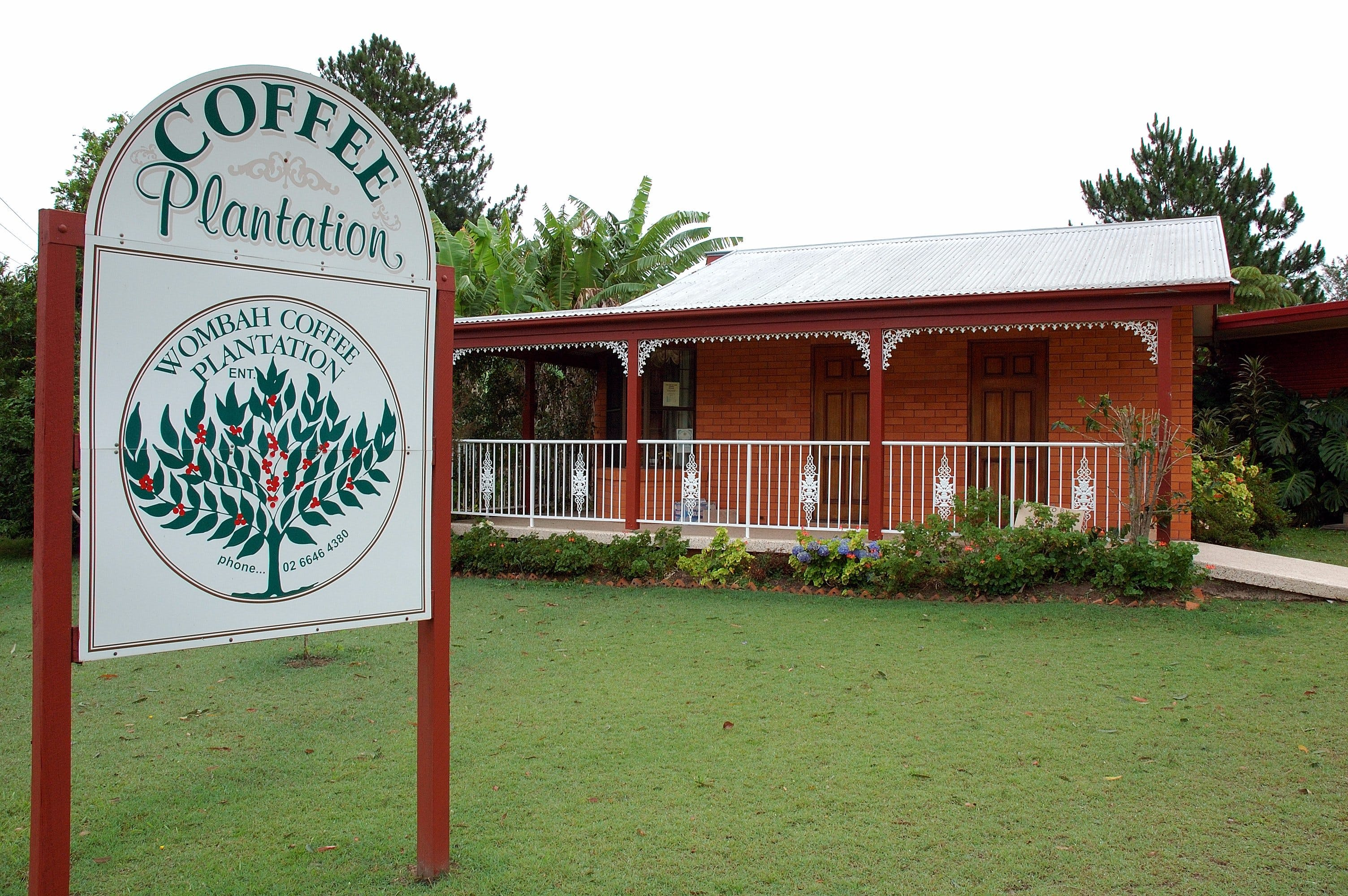 Wombah Coffee Plantation - St Kilda Accommodation