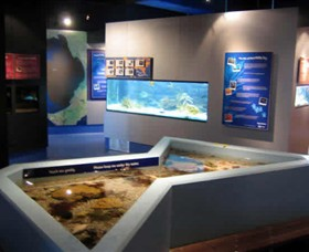 Marine and Freshwater Discovery Centre - St Kilda Accommodation