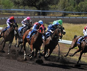 Alice Springs Turf Club - St Kilda Accommodation
